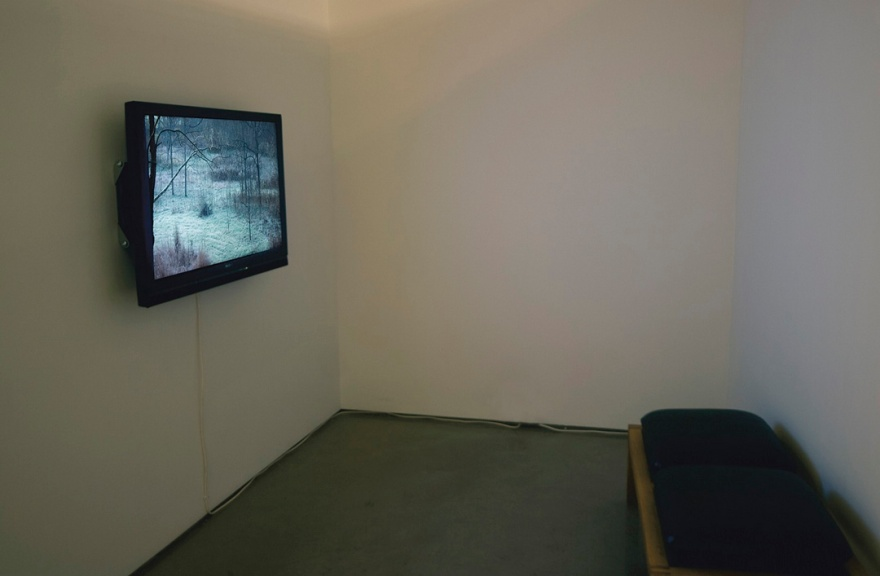 "Jamie Hahn, ""Deer Field"", 4:53, single channel video installation, Figure Ground Rhythm Thesis Exhibition, 2010"