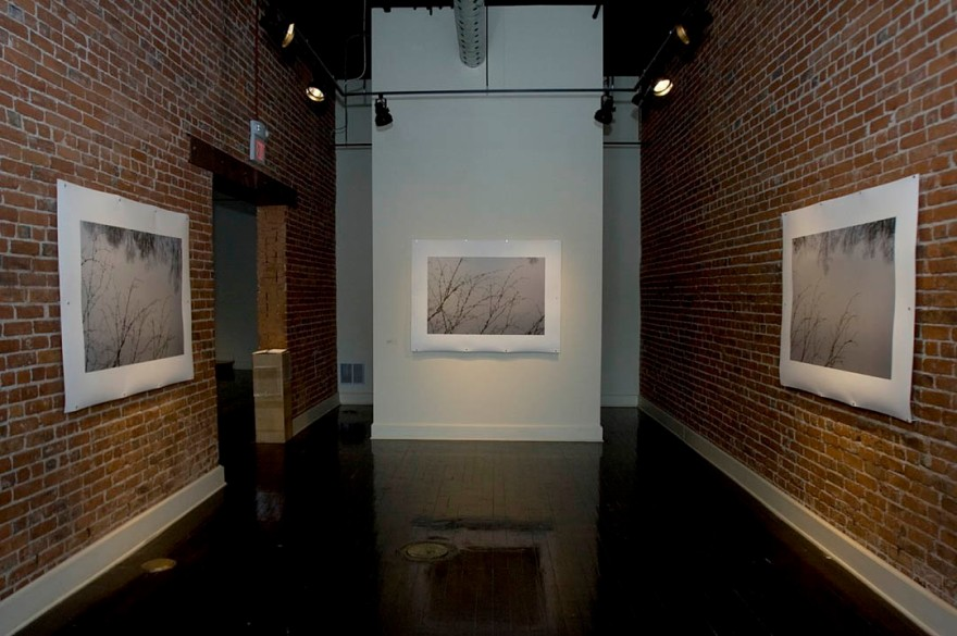 "Jamie Hahn, ""Figurative Ground"", archival inkjet installation, Saranac Art Projects, Spokane, WA 2010"